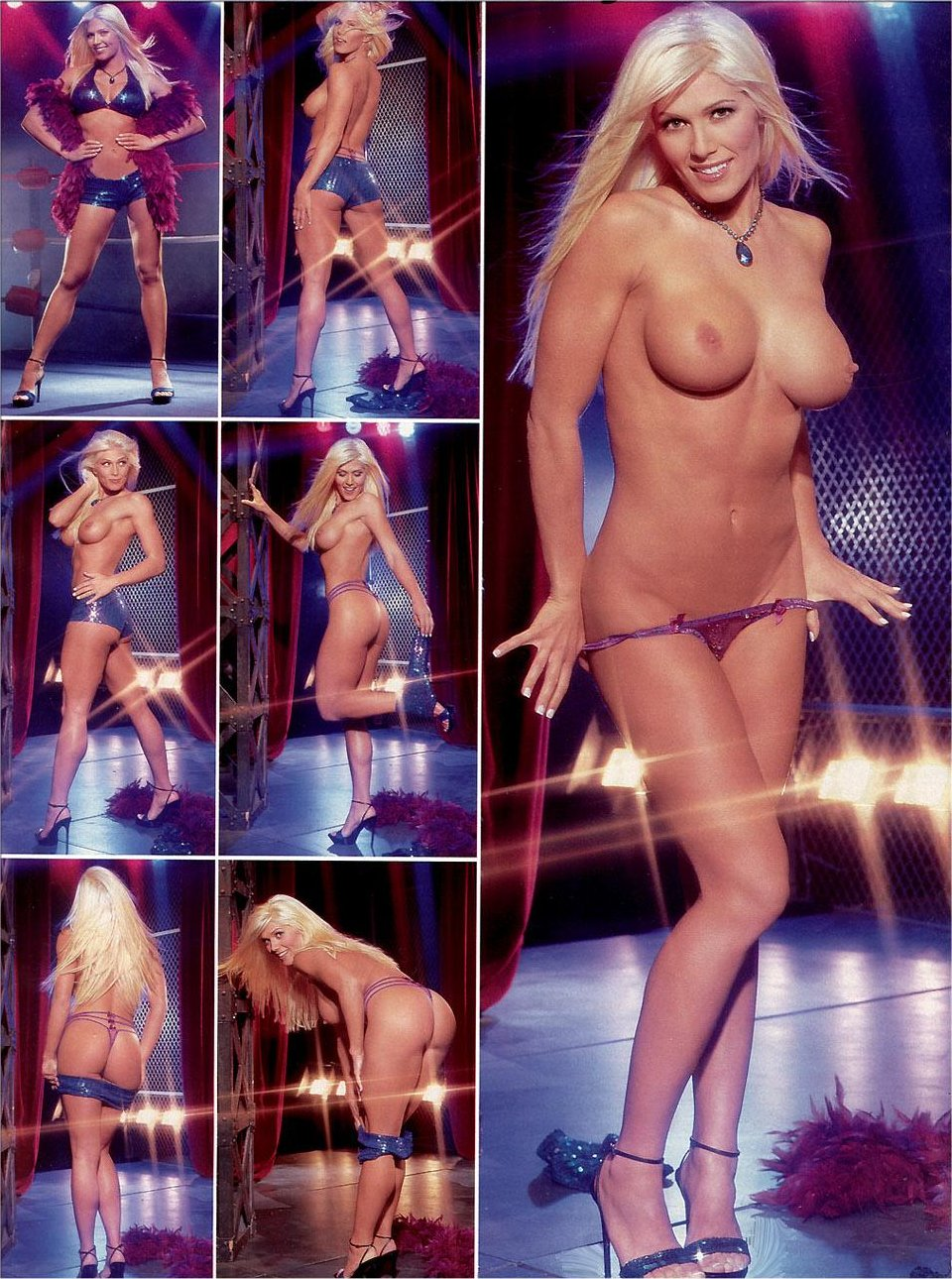 Torrie wilson nude playboy photos